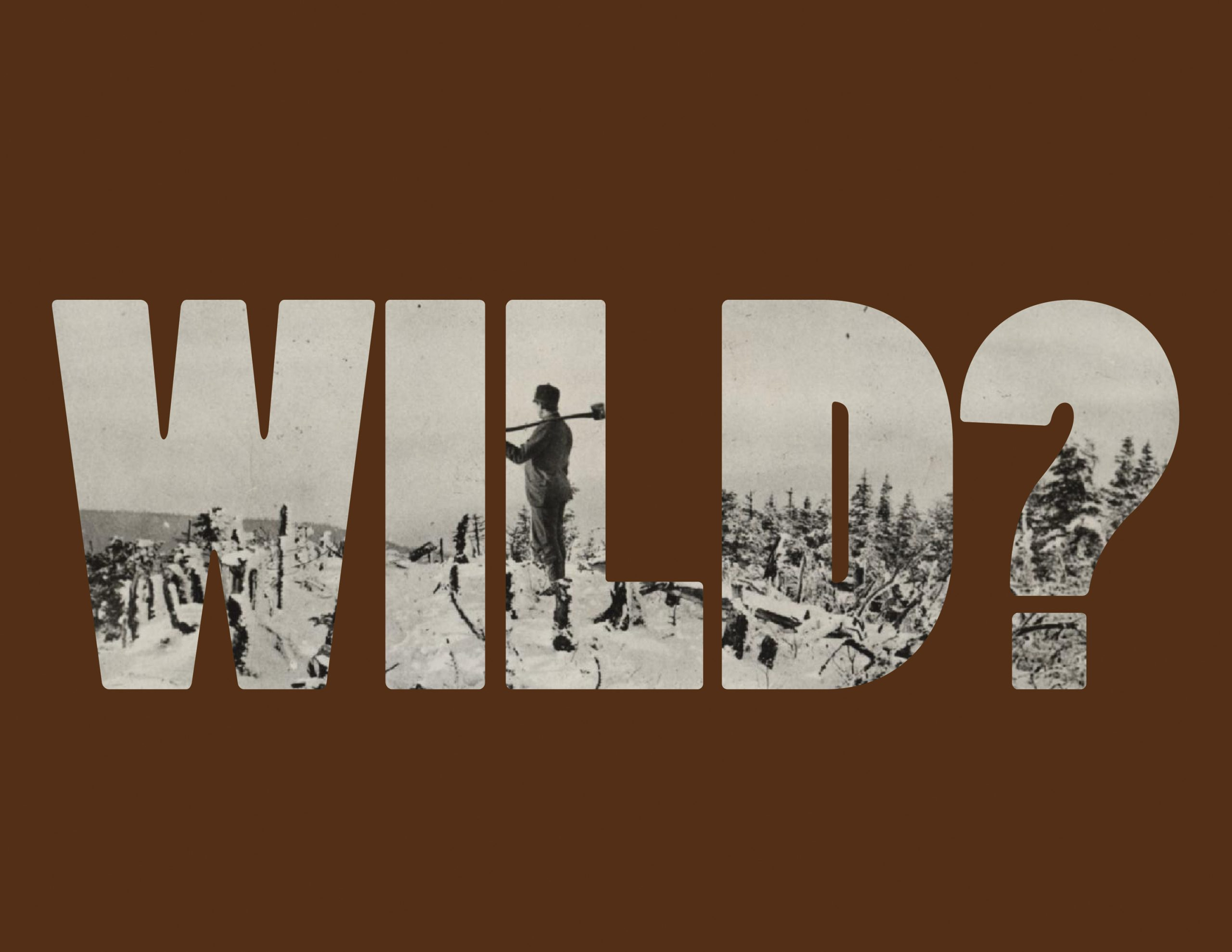 Project image 4 for Worked / Wild, Essex County Historical Society