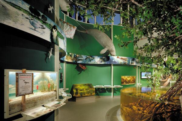 Exhibits at Rookery Bay National Estuarine Reserve