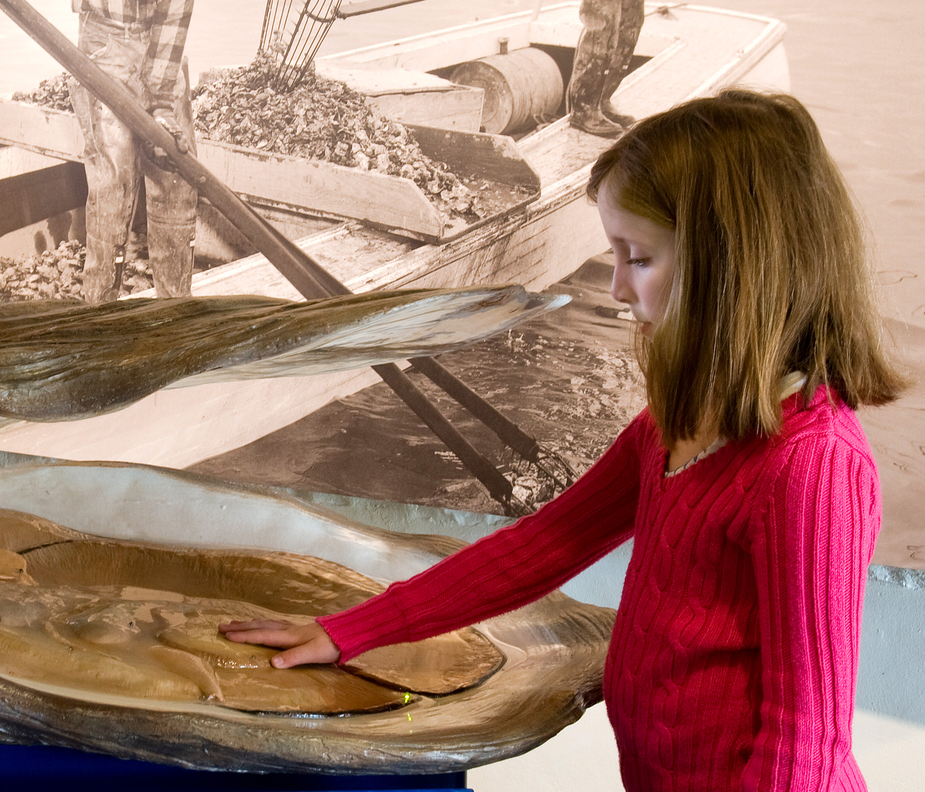 Project image 1 for Oysters on the Half Shell Exhibit, Annapolis Maritime Museum