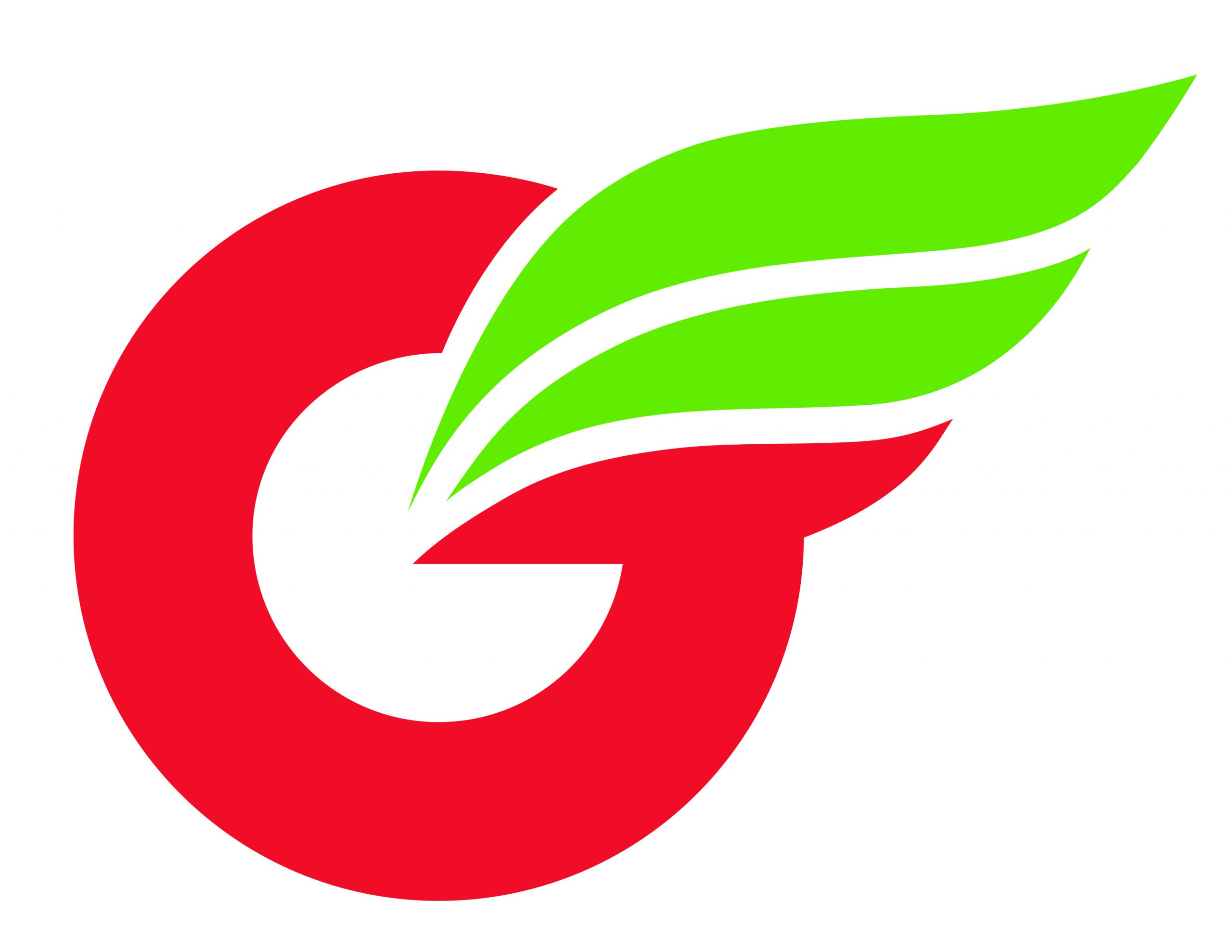 Project image 1 for Identity, Greenwing Motorcycles