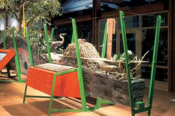 Exhibits for John Heinz National Wildlife Refuge at Tinicum