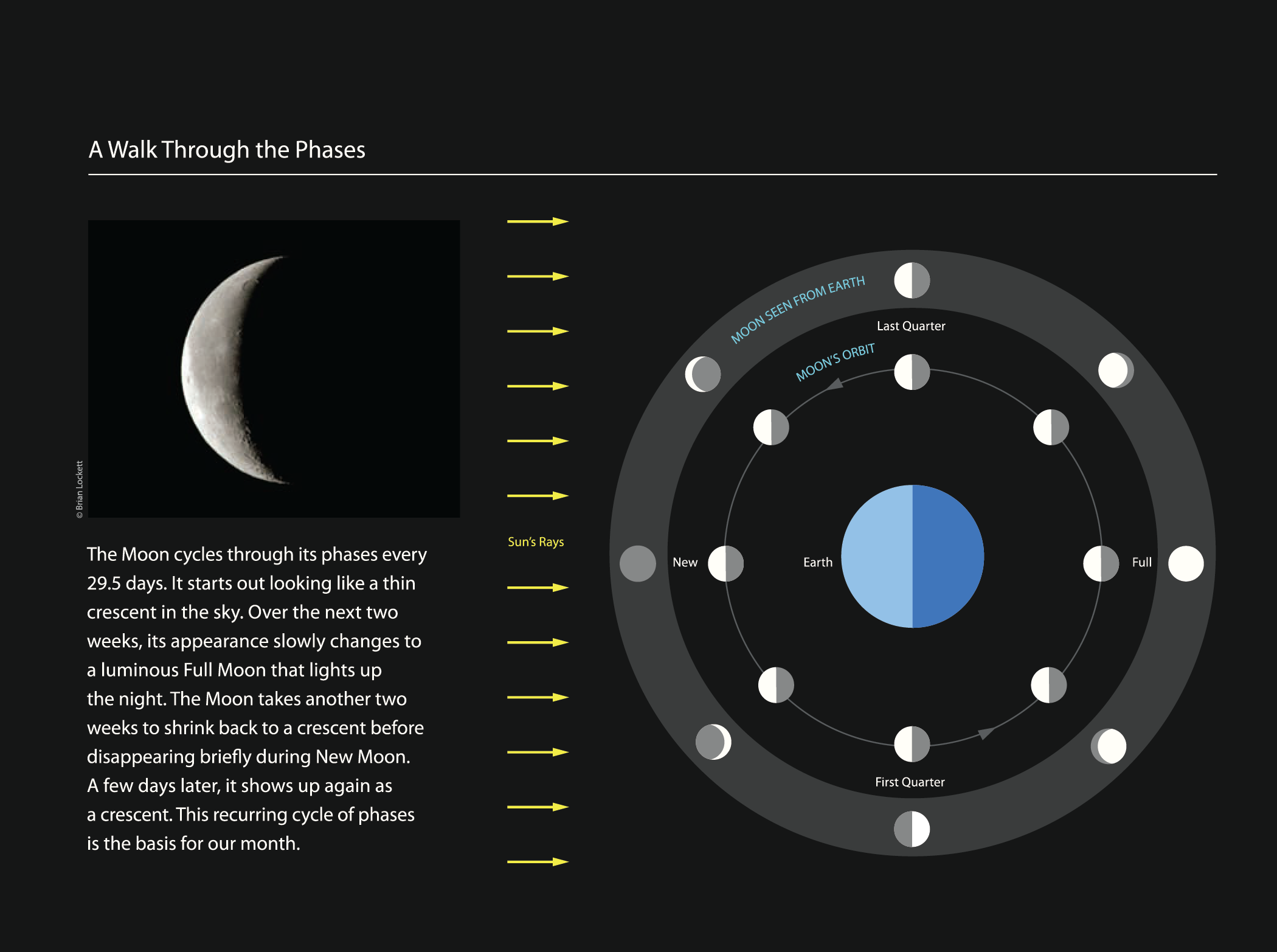 Project image 1 for Infographics, Griffith Observatory