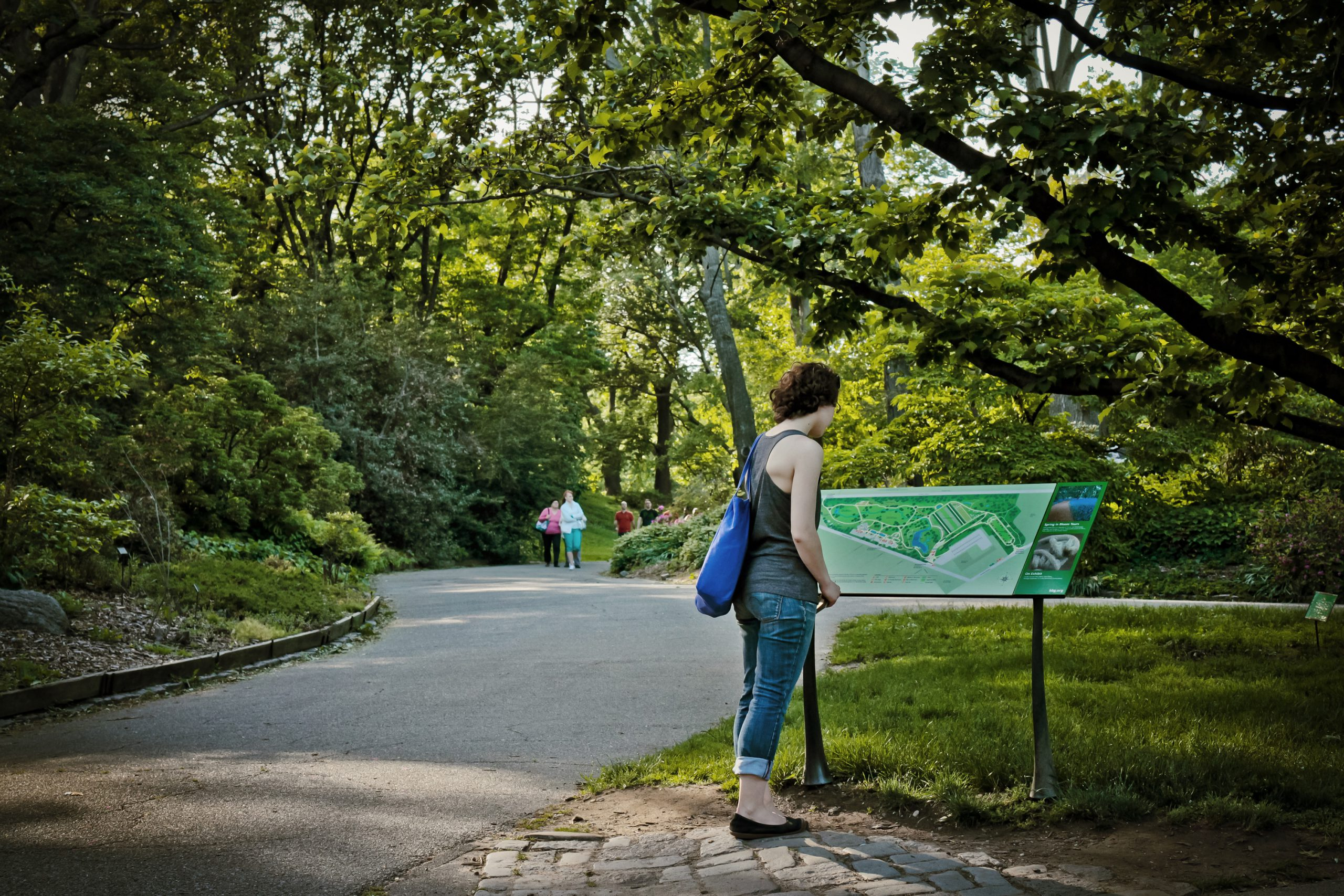 Project image 4 for Mapping, Brooklyn Botanic Garden