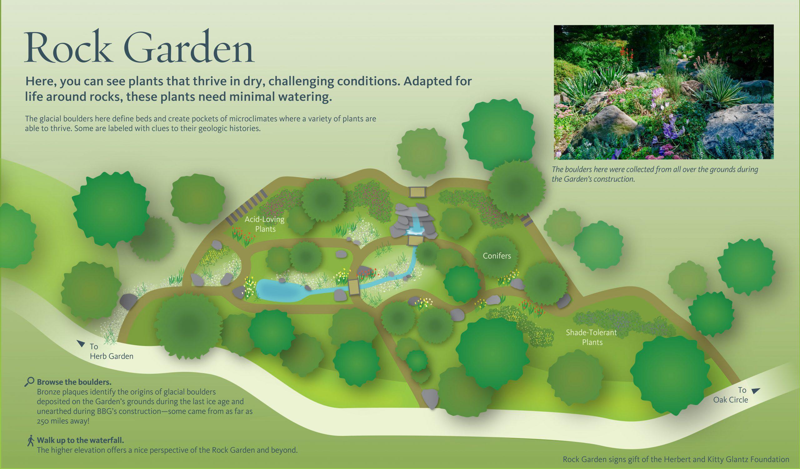 Brooklyn Botanic Project Image Rock Garden