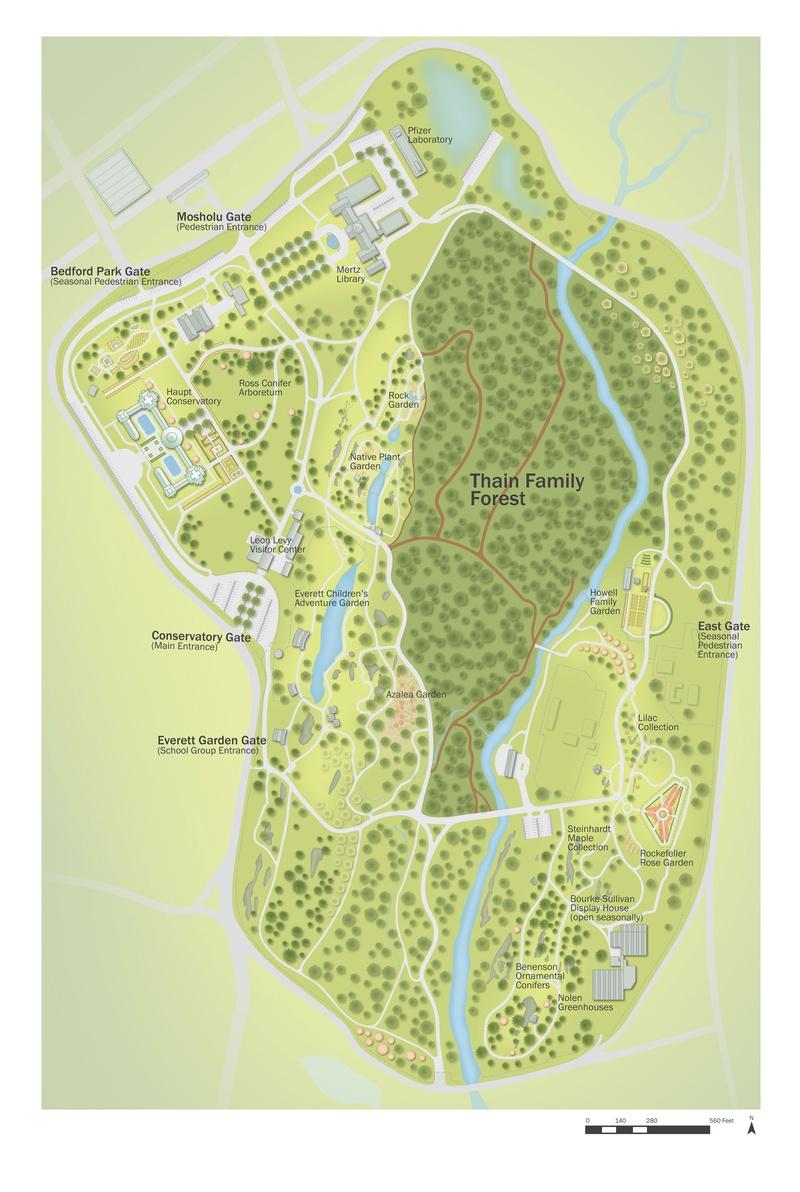 Thain Family Forest Program Maps