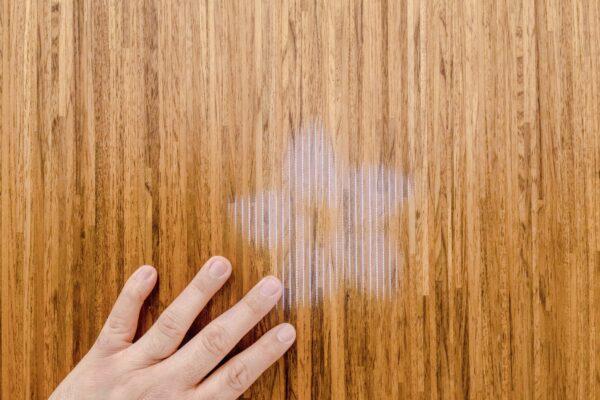 Dreams in Fiber Optic Wood